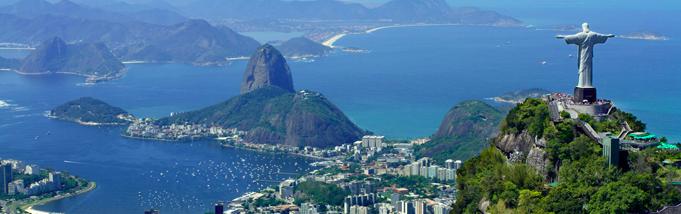 Dedetização no Rio de Janeiro: Como não errar na hora escolher qual empresa contratar