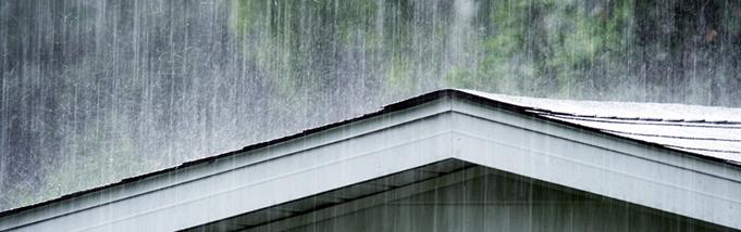 Como combater os insetos na época das chuvas