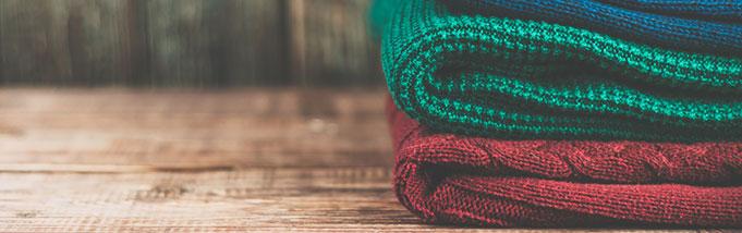 6 maneiras de combater as traças e proteger roupas e livros
